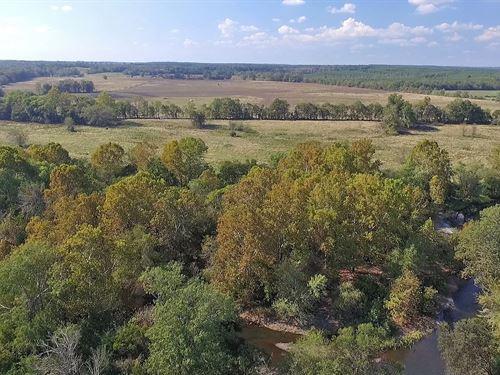 Sevier County Land Cossatot Ranch : Gillham : Sevier County : Arkansas