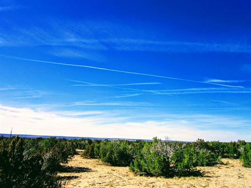 40 Acres With Hwy 191 Frontage : Saint Johns : Apache County : Arizona