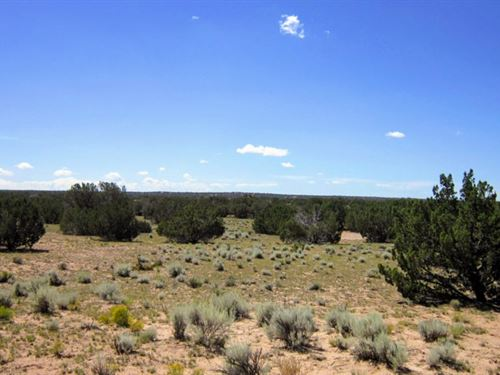 20 Acres For Your Rv Or Tiny Home : Saint Johns : Apache County : Arizona