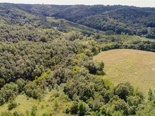 Monroe County Private Wildlife Sanc : Leon : Monroe County : Wisconsin