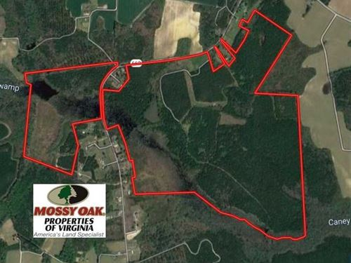 Reduced, 334 Acres of Hunting : Emporia : Greensville County : Virginia