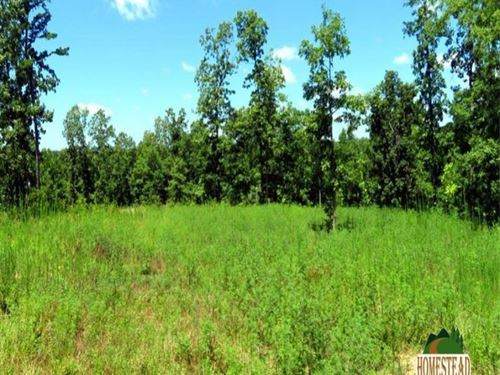 Large Parcel With Private Driveway : Jadwin : Texas County : Missouri