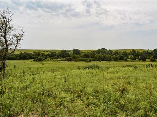 Greenwood County Ducks & Bucks : Toronto : Greenwood County : Kansas