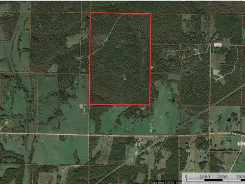 Hunting Property Texas County : Summersville : Texas County : Missouri