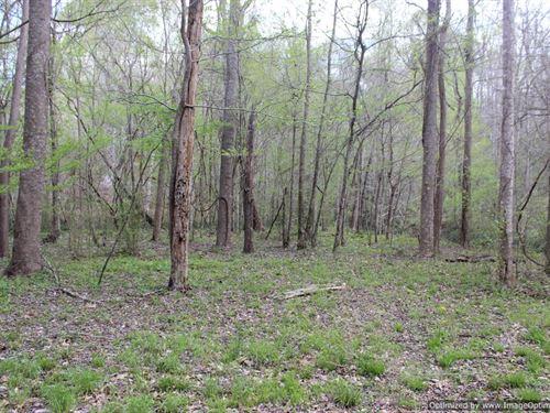 Outstanding Recreational Property : Satartia : Yazoo County : Mississippi
