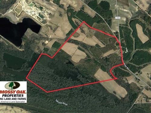 Reduced, 389 Acres of Farm And Ti : Grifton : Craven County : North Carolina