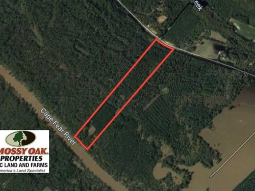32.01 Acres of Hunting And Timber : White Oak : Bladen County : North Carolina