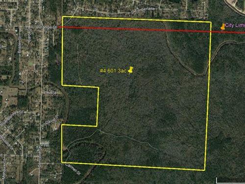 601 Acres Forested Development : Vidor : Orange County : Texas