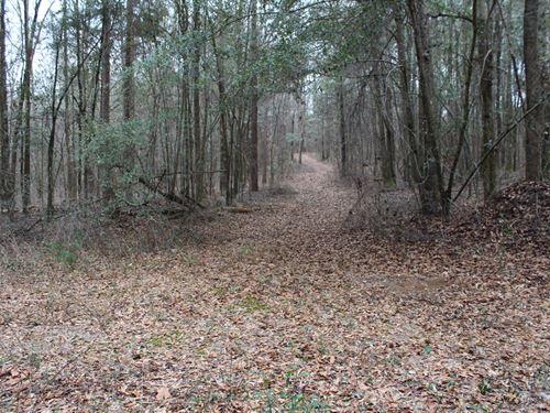 Saville Rd Crenshaw Co Land : Highland Home : Crenshaw County : Alabama