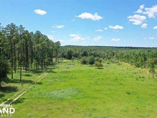 Burbon Lane Recreational, Farm Trac : Robertsdale : Baldwin County : Alabama