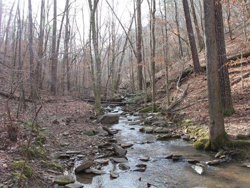 268 Acre Hunting Tract : Tuscaloosa : Alabama