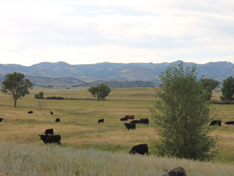 Indian Springs Ranch : Wheatland : Platte County : Wyoming