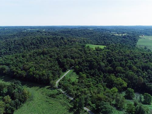 Land Auction In Noble Co, Ohio : Caldwell : Noble County : Ohio