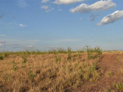 212 Acres Farmland in Archer Count : Megargel : Archer County : Texas