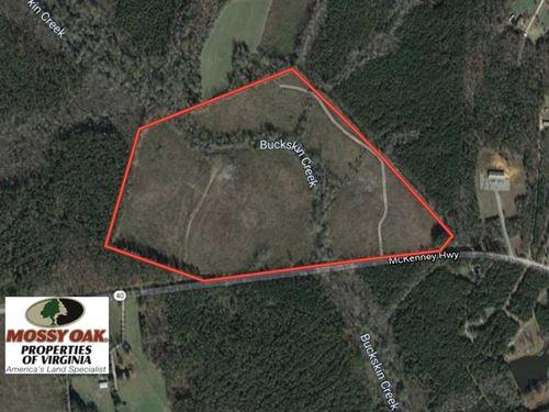 66 Acres of Hunting Land For Sale : Dinwiddie : Virginia