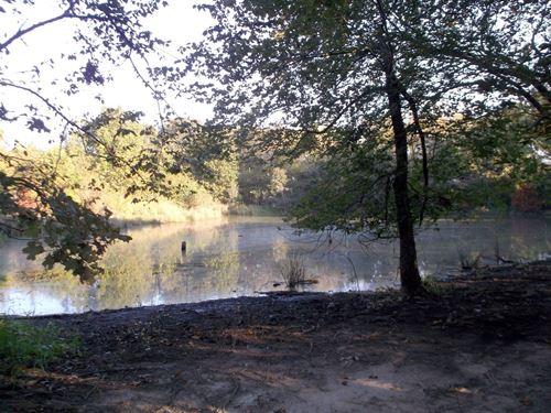 Over 81 Acres, Hunt, Farm, Build : Winnsboro : Hopkins County : Texas