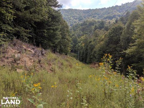 High Rock Mountain : Marshall : Madison County : North Carolina