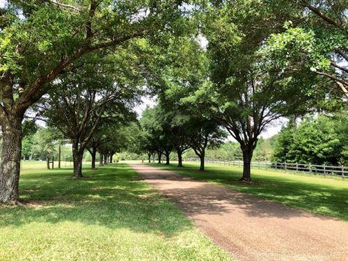 Beautiful Equestrian Estate : Gloster : Amite County : Mississippi