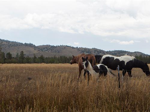 West Casper Acreage : Casper : Natrona County : Wyoming