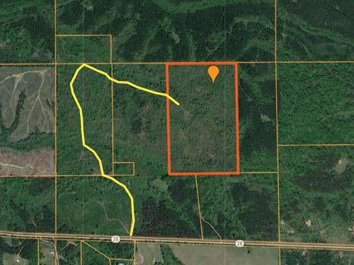 100 Ac, Marengo Co : Thomaston : Marengo County : Alabama