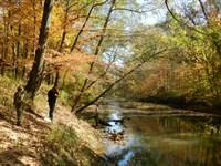 Long Creek Meadow : Lexington : Oglethorpe County : Georgia