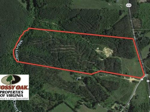 54 Acres of Hunting Land For Sale : Nathalie : Halifax County : Virginia