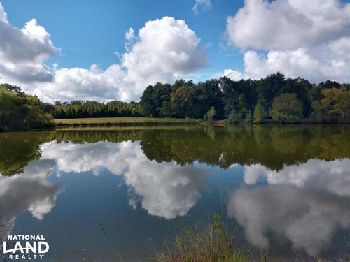 Fitzpatrick Farm And Investment : Fitzpatrick : Bullock County : Alabama