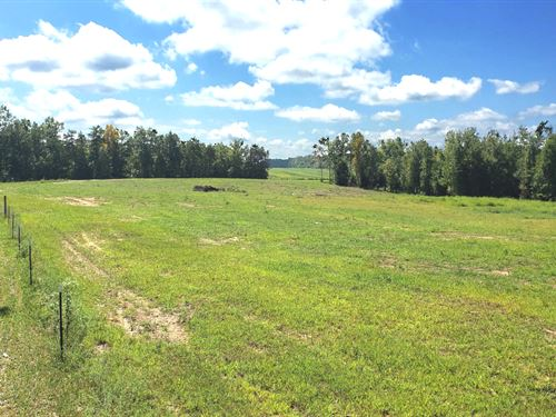192 Ac In 6 Tracts, Creek Frontage : Clarkrange : Overton County : Tennessee