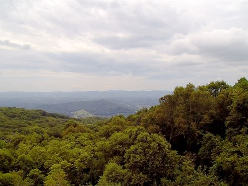 11.668 Acre Mountain Homesite : Independence : Grayson County : Virginia