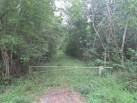 Jones Road Tract : Lake City : Florence County : South Carolina