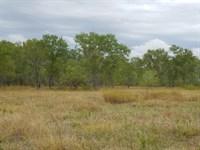 Cottonwood Ranch : Thalia : Foard County : Texas