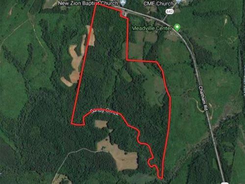 Timber Investment Near Kerr Lake,Va : Nathalie : Halifax County : Virginia