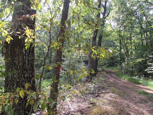 Great Hunting Location In Wv : Grove : Doddridge County : West Virginia