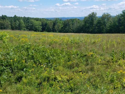 Field Land Dover-Foxcroft, Maine : Dover-Foxcroft : Piscataquis County : Maine
