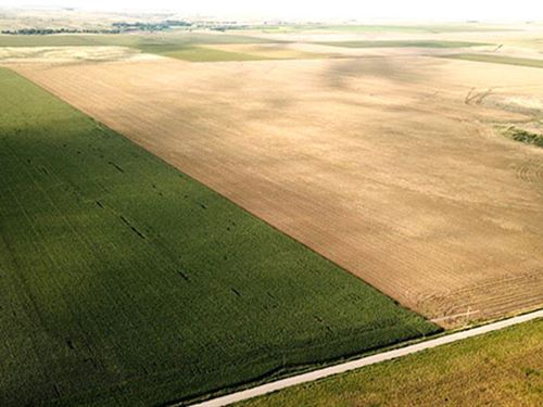 Sells Without Reserve Selling : Bird City : Cheyenne County : Kansas