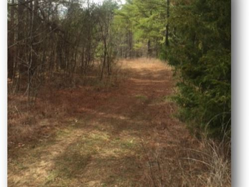 140 Acres In Yalobusha County In Oa : Oakland : Yalobusha County : Mississippi