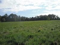 27 Acres, Lancaster County, Sc : Lancaster : Lancaster County : South Carolina