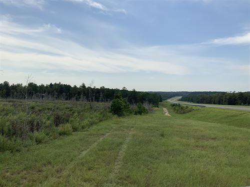 30 Ac Homesite In Great Location : Ellaville : Schley County : Georgia