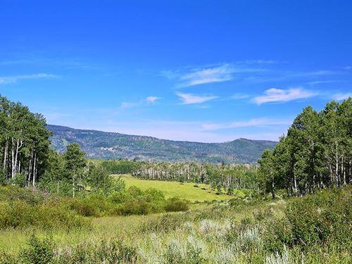 Ranger Station : Hayden : Rio Blanco County : Colorado