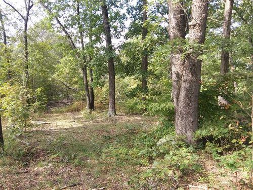 160 Acres In Eldridge, MO : Eldridge : Laclede County : Missouri