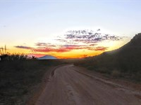 110 Acres $588/Mo, Great Hunting : Sierra Blanca : Hudspeth County : Texas