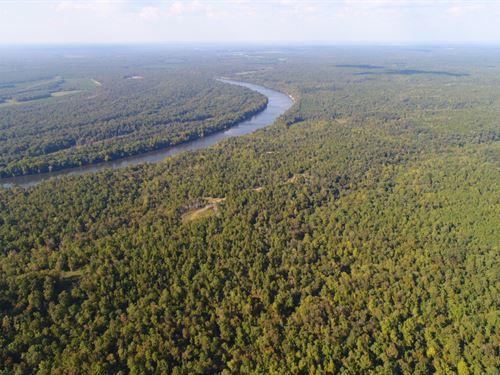 Elm Bluff Plantation, Alabama River : Elm Bluff : Dallas County : Alabama