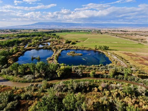 Colorado Duck Hunting Property : Olathe : Montrose County : Colorado
