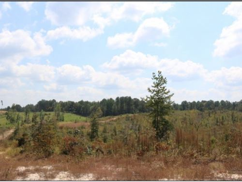60 Acres In Newton County In Little : Little Rock : Newton County : Mississippi