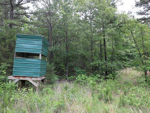 Hunting Acreage in Izard County : Oxford : Izard County : Arkansas