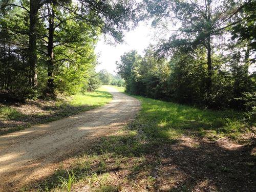 40 Acres Joins Homochitto National : Meadville : Franklin County : Mississippi