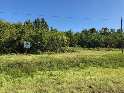 Nice Hunting Tract Joins Nat Trace : Natchez : Adams County : Mississippi