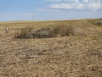 Building Site Or Recreational Use : Torrington : Goshen County : Wyoming