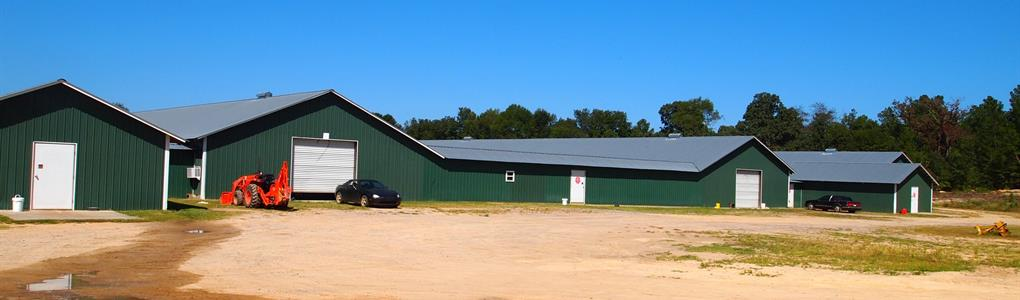 4 House Poultry Breeder Farm : Salley : Aiken County : South Carolina