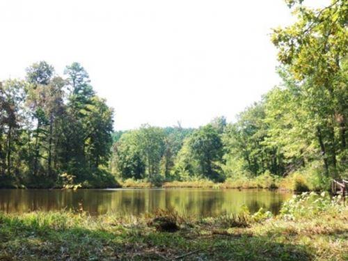 192 Acres In Montgomery County : Winona : Montgomery County : Mississippi